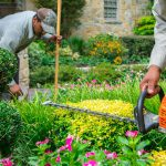 Why Should You Hire A Local Lawn Care & Maintenance Company?